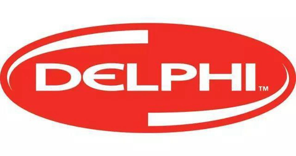 China best DELPHI FUEL INJECTOR on sales